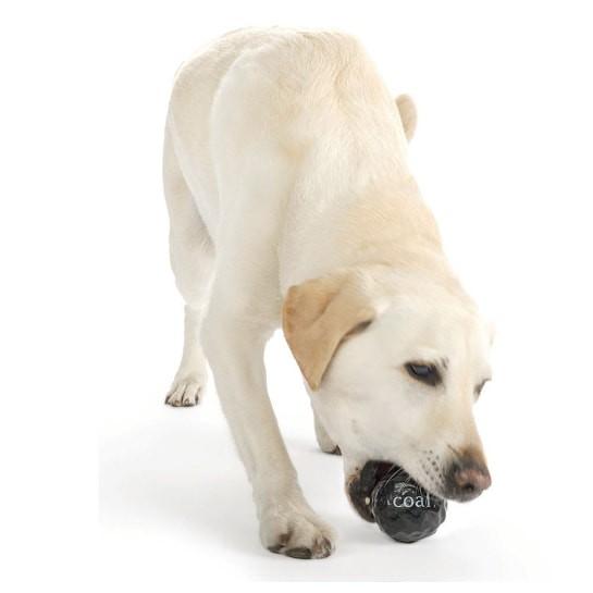 Planet Dog® Coal Hundeball