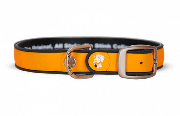 All Style No Stink Hundehalsband Orange