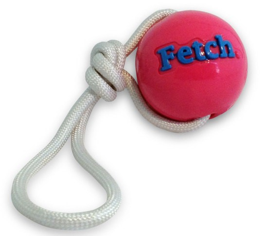 Planet Dog Orbee-Tuff® Fetch Hundeball mit Seil pink